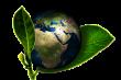earth-661447__180